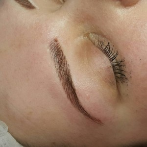 tracy fensome perament makeup brows